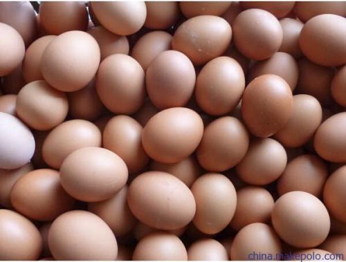 无公害鸡蛋
