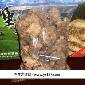 巴里坤野蘑菇