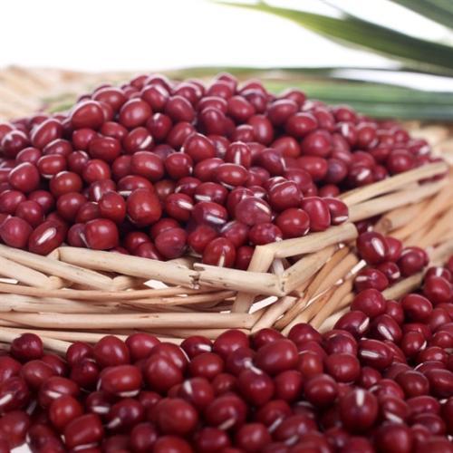 黑垦二九〇红小豆