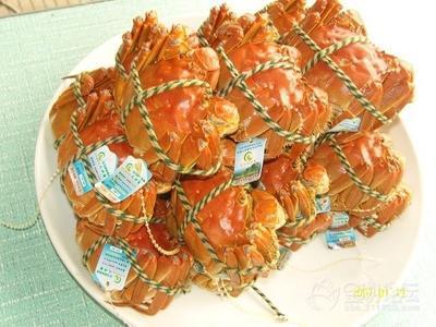 白马湖青虾