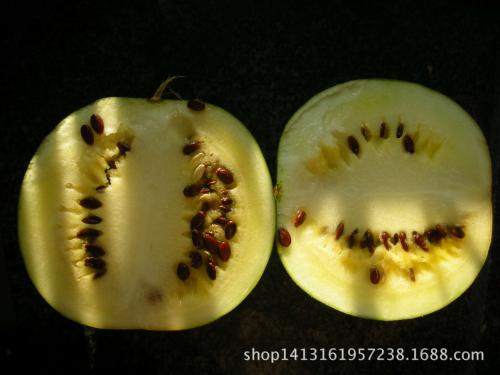 道州红瓜子
