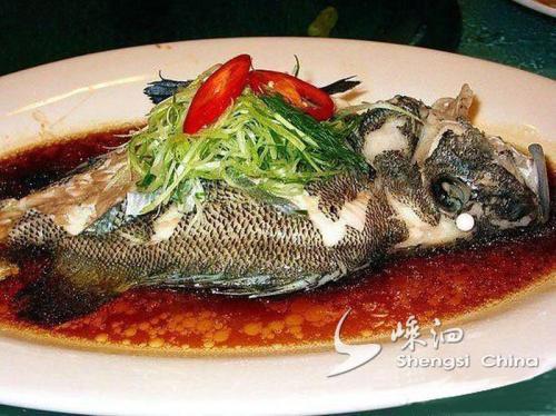 嵊泗石斑鱼