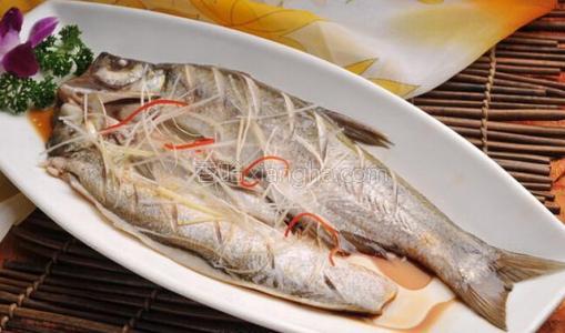 蛋白翘嘴鱼